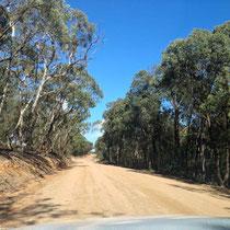 Auf dem Weg nach Canberra