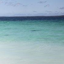 Der dunkle Schatten im Wasser ist ein Hai..