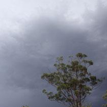 Gewitterwolken - ab Spätnachmittags gewittert es momentan ziemlich oft, hoffentlich hält das Wetter sich nicht beim Hochreisen der Ostküse ;/
