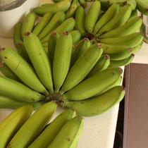 Bananen aus dem eigenen Garten :):)