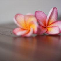 Süße Blumen aus dem eigenen Garten