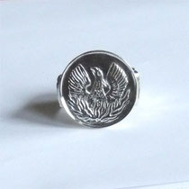 Ring Phoenix