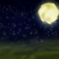 Midnight desert