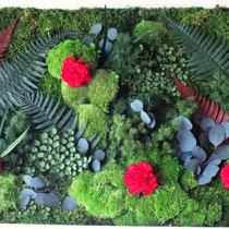 Cadres et tableaux végétaux stabilisés
