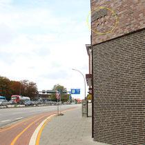 Sperlinge sollen hier an einer von Hamburgs größten Kreuzungen an der Kieler Straße, Ecke Sportplatzring brüten.