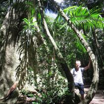 Markus mit seiner neuen Hängematte aus ökologischem Anbau.