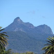 Der Mount Warning von der sicheren Entfernung aus.