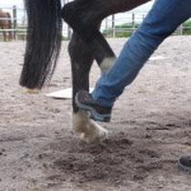Mit dem Target kann man das Bein in die richtige Position formen