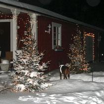 Weihnachten in Schweden