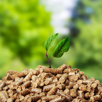 Bild: stock.adobe.com, fotofabrika
