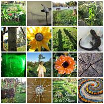 Le jardin de la Plume, un espace éducatif, Abbeville, Baie de Somme