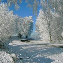 Landhaus Wildfeuer: Winter-Weg ins Dorf