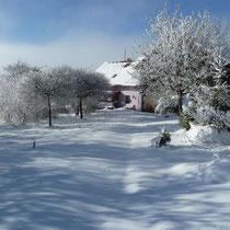 Blick auf die verschneite Zufahrt zum Ferienhaus