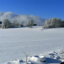 Landhaus Wildfeuer: Winter-Landschaft