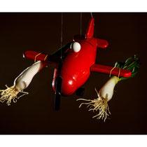 Oignons Rocket