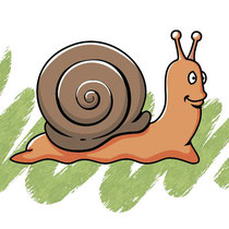 Escargot Vecto 01