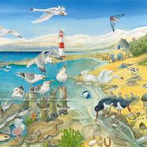 Das Meer: Die Nordseeküste