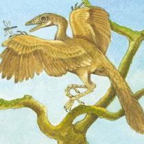 Urvogel