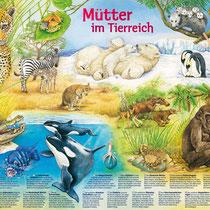 """Medizini-Wissensposter """"Mütter im Tierreich"""""""