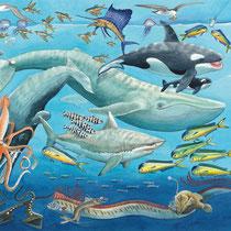 Das Meer: Die Hochsee