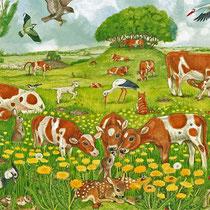 Feld und Wiese: Auf der Weide