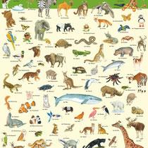100 Tiere, Zweitverwertung