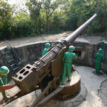 Cannon Fort
