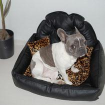Emma und ihr neues Leo-Leder- Hundebettchen. ^^