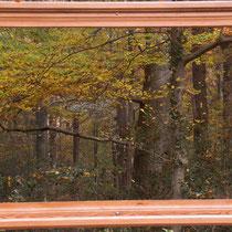 Heiko Friedel: Wald