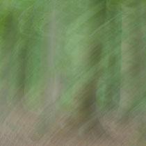 Wilfried Vogelpohl: Drehender Wald