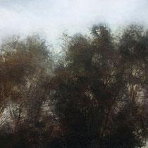 arbres dans le vent - acrylique sur bois - 40x61 cm - 2009 - M - Pavlïn