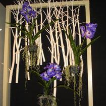 [Florales] <h3>Kunst und Objekt, Florales</h3><p>Florales</p>