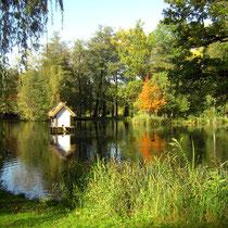 Spreewald, Herbst 2009