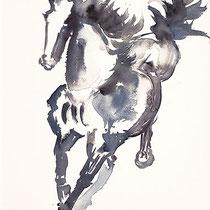 Pferd in Blau