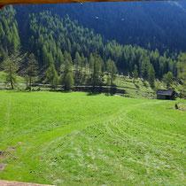 Der Blick vom Fenster oben auf die eingezäunte Wiese vor der Hütte, viel Platz zum Toben!