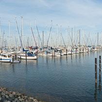 Yachthafen - Heiligenhafen