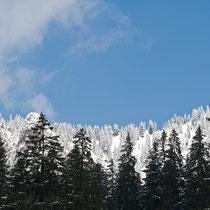 Ausblick aufs Ammergebirge