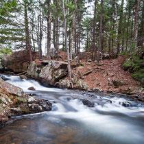 Fall, Acadia National Park