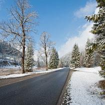 Der Weg zum Schloss Linderhof