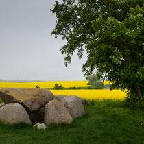 Dolmen - Großsteingräber bei Rerik