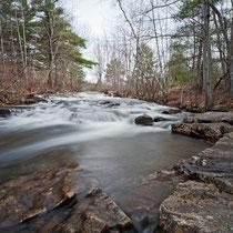 Stony Brook , Acadia National Park