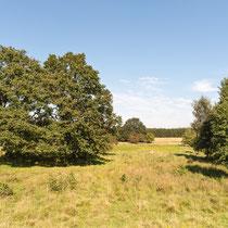Naturschutzgebiet Hamburg Höltigbaum