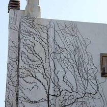 Pflanzliches Dekor