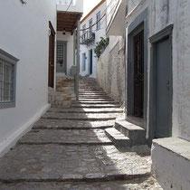 Vierbeinergerechte Treppen