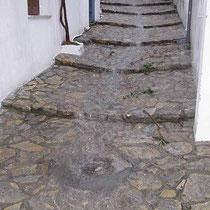 Wasserführende Wege