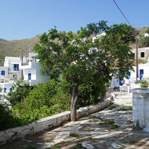 In Kallitsos