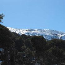 Nochmals ein Schneeberg