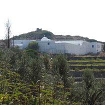 Kloster Vrissi