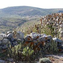 Kräuter und Steine