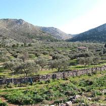 Das Tal von Palamidas